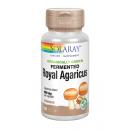 Royal Agaricus, Champiñón del Sol Orgánico, 60 cápsulas SOLARAY en Herbonatura.es
