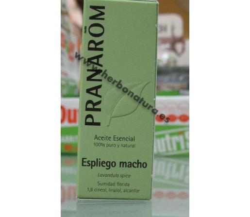 Aceite Esencial Espliego Macho Biológico (Lavandula spica) 10ml. PRANAROM