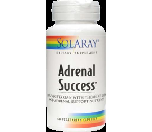 Adrenal Success Teanina, GABA, Schisandra... 60 cápsulas SOLARAY