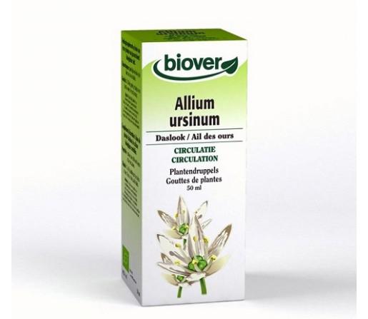 Ajo de Oso, Allium Ursinum extracto Circulación 50ml. BIOVER