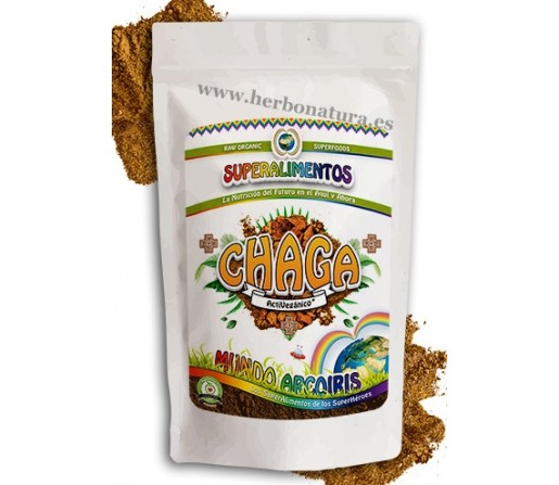 Chaga Mushroom Polvo Ecológico Superalimento 125gr. MUNDO ARCOIRIS