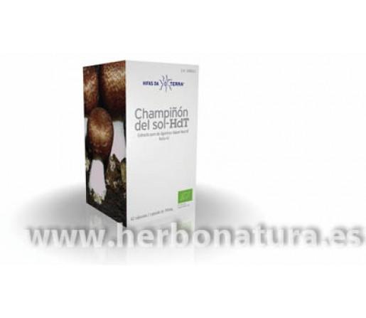 Champiñón del Sol-HdT, Extracto de A. Blazei Murrill Ecológico 70 cápsulas HIFAS DA TERRA