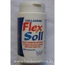 Collagene Flex Soll Colageno, Glucosamina, Condroitina, MSM... 60 comprimidos WINTER