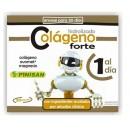 Colágeno Forte (colágeno, ovomet, magnesio...) 30 cápsulas PINISAN en Herbonatura.es