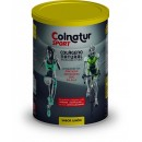Colnatur Sport Limón, Colágeno, magnesio, zinc, manganeso, vitaminas 345gr. PROTEIN