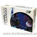 Coral Calcio Sango de Okinawa 60 cápsulas CFN en Herbonatura.es