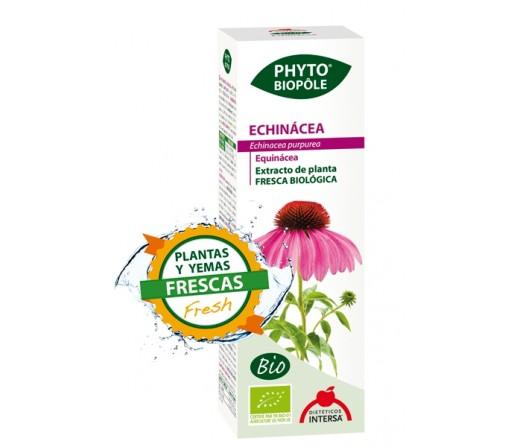 Echinácea Extracto Bio Planta y Yemas Frescas Phyto-biopôle 50ml. INTERSA