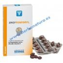 Ergyfosforyl Fosfolípidos Marinos Omega 3 y Cofactores Vitamínicos 60 perlas NUTERGIA en Herbonatura.es