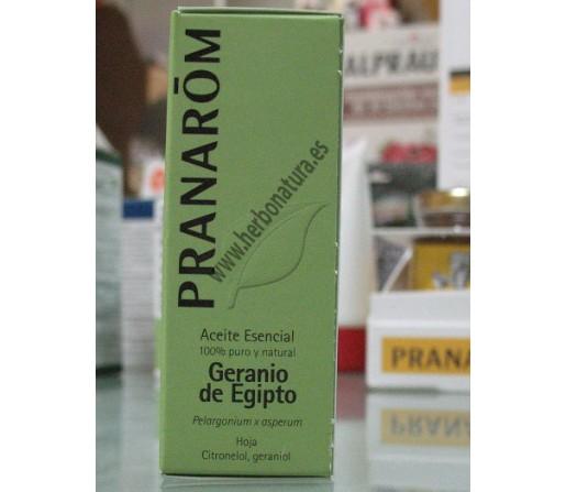 Aceite Esencial Geranio de Egipto Hoja (Pelargonium x asperum) 10ml. PRANAROM