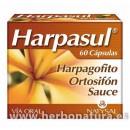 Harpasul harpagofito, ortosifon y sauce 60 cápsulas NATYSAL