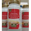 Hericium Extracto Ecológico de Melena de León 60 cápsulas HANOJU