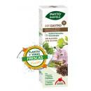 Mix Gastro 15 Bio Planta y Yemas Frescas Extracto Phyto-biopôle 50ml. INTERSA en Herbonatura.es