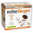 Poliar Regen (Colágeno, Cartílago, Coral, Harpagofito, Enzimas...) 30 sobres PINISAN