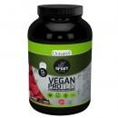 Proteina Vegetal Vegana Sport Live sabor frambuesa 600gr. DRASANVI en Herbonatura.es